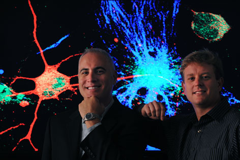 Frank LaFerla, left, Mathew Blurton-Jones and colleagues found that neural stem cells could be a potential treatment for advanced Alzheimer's disease.
